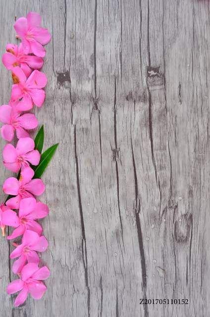 Online Shop Life Magic Box Fotografia Photo Background Photography Backdrops Photocall Camera Photography Backdrops Flower Background Wallpaper Wall Backdrops