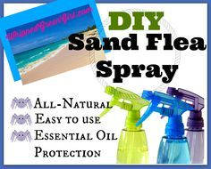 DIY Sand Flea Spray (By WhippedGreenGirl.com) #Allnatural #essentialoil protection