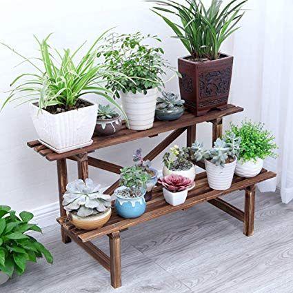 Plantas De Exterior En Maceta