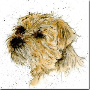 Dogs Archives Sarah Boddy