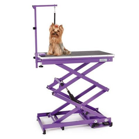 Master Equipment X Tend Electric Grooming Table Dog Grooming