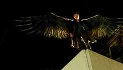 #Dominion I watch this show for the plot. And by plot, I mean the wings.