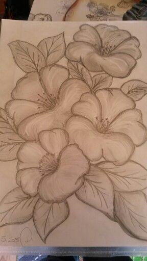 My First Pencil Draw Draw Pencil Pencil Art Drawings Pencil