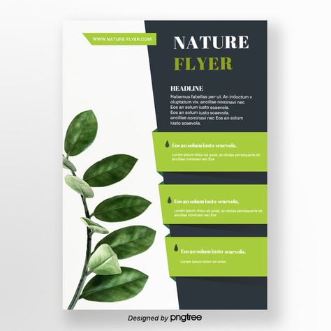 Geometric Concise Leaf Green Natural Flyer