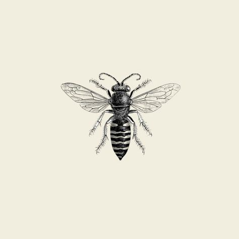 really like this little bee print