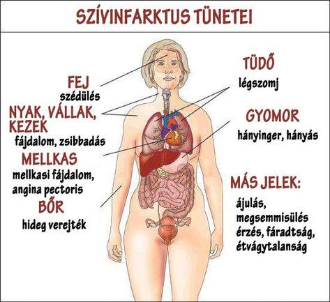 módja a mellkas zsírégetésének)