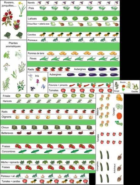 5 Exemples De Plans De Potager Et De Contenus De Potager En 2020 Plan Potager Potager Jardin Potager