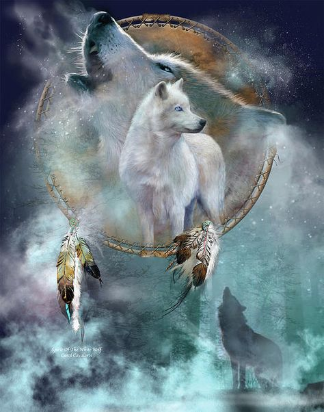 Dream Catcher - Spirit Of The White Wolf Greeting Card