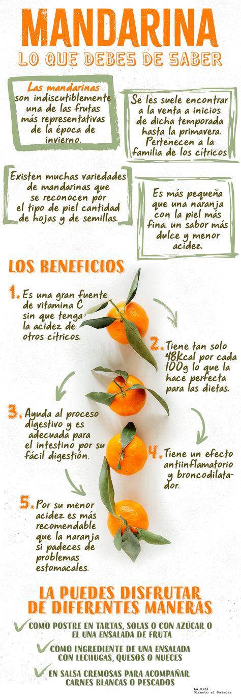 190 Ideas De Alimentos Propiedades Salud Y Nutricion Beneficios De Alimentos Alimentos