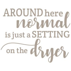 Around here Normal is just a setting on the dryer-Vinyl Wall Decal Wall Quotes