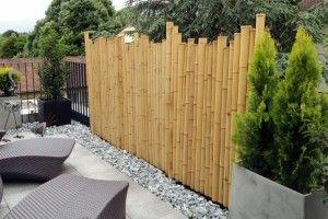 Solution Vis A Vis Jardin Bambou Pour Cacher Vis A Vis Cache Vis A