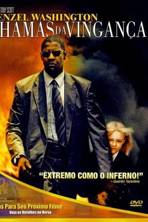 Chamas Da Vinganca 2004 Torrent Bluray 720p E 1080p Dual Audio