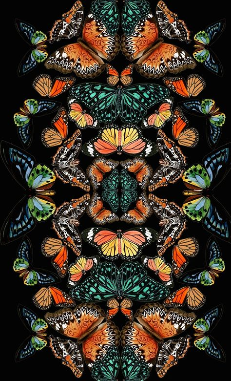 Love these colors on a black ground! Spring Butterflies on Behance- Natalia Gemma