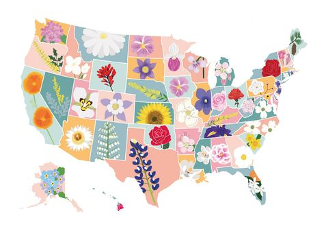 Featuring the flowers of each state in the USA, Sarah Frances has created this colourful map print that would be a great addition to any USA lover's home. Map Painting, Love Painting, Design Thinking, Illustrations, Illustration Art, Village Map, Us Map, U.s. States, France