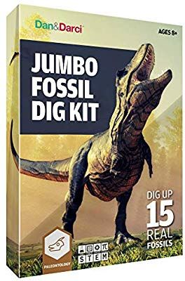 Amazon com: Mega Fossil Dig Kit - Dig Up 15 Real Fossils (Dinosaur