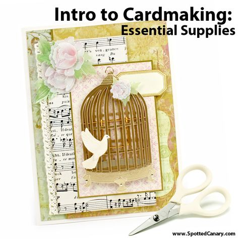 Card Making Basics: Cardmaking 101 on Spotted Canary