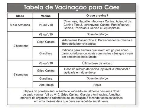 giardia vacina perros