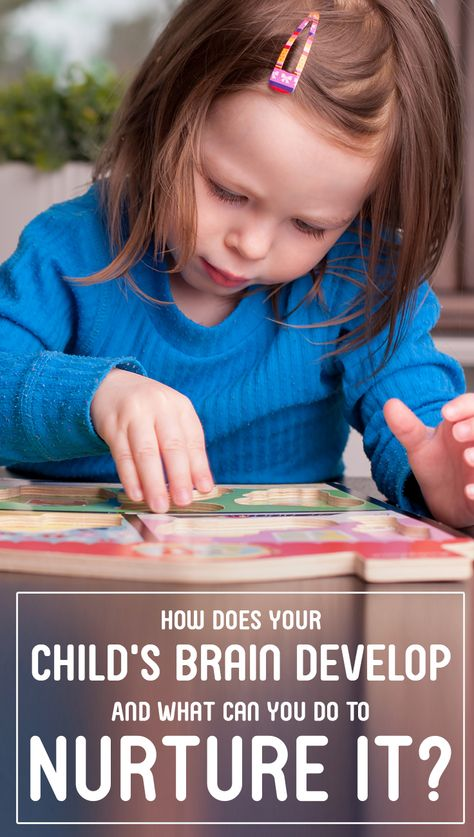 How Does Your Child's Brain Develop And What Can You Do To Nurture It? The brain grows rapidly during the first three years and this article offers some great suggestions for helping our young children to learn.