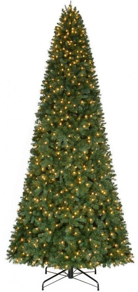 Home Accents Holiday 12 Ft Pre Lit Led Morgan Pine Quick Set Artificial Tree Christmas Tree Clear Lights Pre Lit Christmas Tree Pine Christmas Tree
