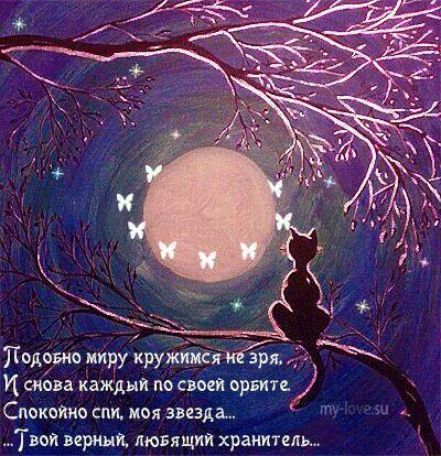 Pin Ot Polzovatelya Nataliya Nikolaeva Na Doske Spokojnoj Nochi