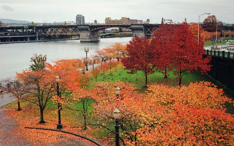 How to do Portland in the fall