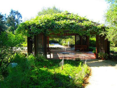 Http://socalweddingconsultant.com Southern California Wedding Planner  Covered Gazebo Rancho Santa Ana Botanic Gardens Wedding Claremont |  Pinterest | Gazebo ...
