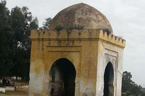وأبو عبد الله الصغير شهد سقوط غرناطة سنة 1492 بمعاهدة بعد يأسهم من المدد المريني والمدد العثماني لإنقاذهم من الحصار وقد ذكر العلام Taj Mahal Landmarks Region
