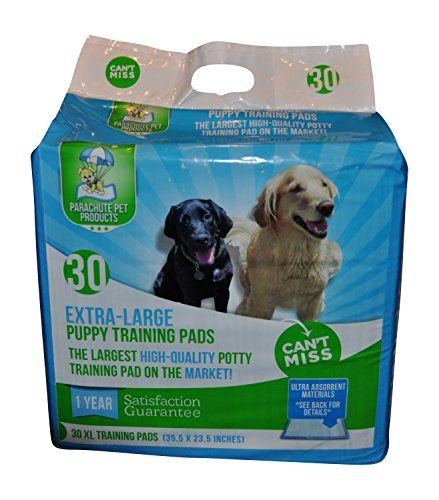 How To Potty Train A Puppy On Pee Pads In 2020 Puppy Training Dog Potty Training Puppy Pads Training