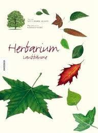 Herbarium Blätter herbarium filofax and journal