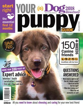 Get Your Digital Subscription Issue Of Dog Directory Magazine On