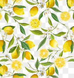 Fresh Lemon Border Fresh Lemon Illustration Lemon Png Transparent Clipart Image And Psd File For Free Download Lemon Art Lemon Background Lemon Flowers