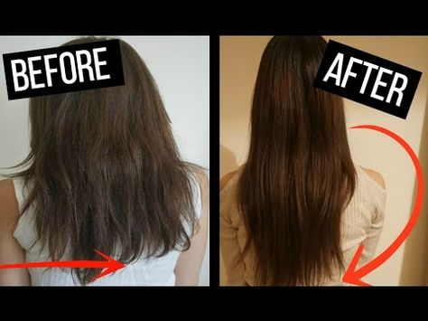 How To Grow Your Hair Fast 3 5 Inches In A Week Hair