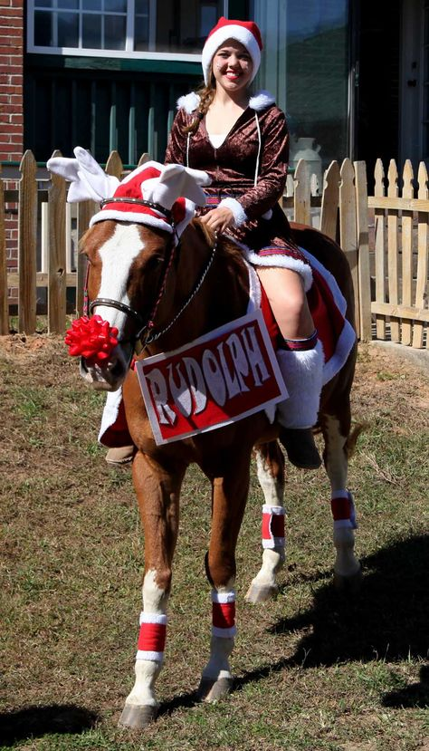REINDEER ANTLERS CHRISTMAS FANCY DRESS HORSE AND PONY