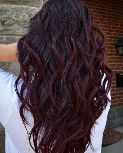 Wine Hair is the best way for brunettes to rock Deep Purple this fall . - Wine Hair is the best way for brunettes to rock Deep Purple this fall – Samantha Fashion Life - Fall Hair Color For Brunettes, Fall Hair Colors, Hair Color Purple, Brown Hair Colors, Wine Red Hair Color, New Hair Colors, Color For Long Hair, Hair Styles For Brunettes, Brunette Fall Hair Color