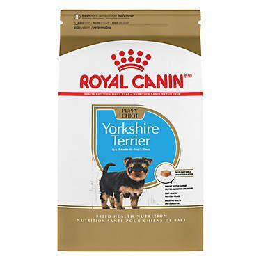 Royal Canin Breed Health Nutrition Yorkshire Terrier Puppy Food Yorkshire Terrier Puppies Yorkshire Terrier Yorkshire Terrier Dog