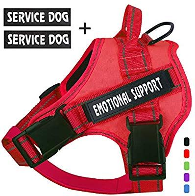 Amazon Com Voopet Service Dog Harness No Pull Emotional Support