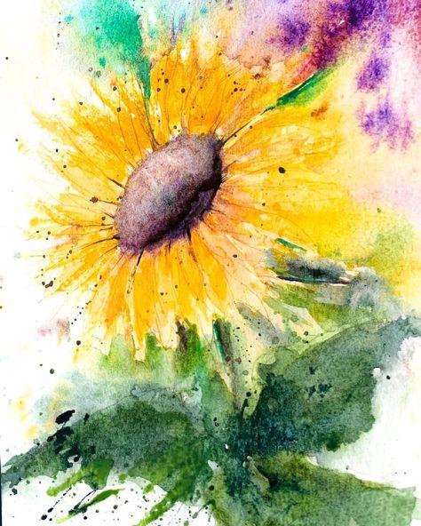 "Water colour ""#sunflower . . . . #letsmakeart #watercolorpaint #botanicalart #looseflorals #watercolorflorals #watercolordrawing #watercolorflowers…"""