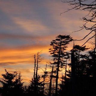 Clingmans Dome. Sunset. #Smoky #Mountains #Hiking #Cades #Cove #National #Park #Smokies #Smokey #vacation