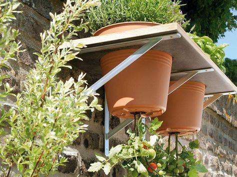 Toom Kreativwerkstatt Upside Down Tomate Tomaten Garten Pflanzideen Garten Pflanzen