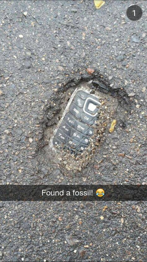 Found a fossil!