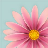 22 Fun Gradient Mesh Tutorials in Adobe Illustrator for Beginners