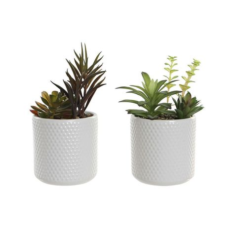 If you want to add a touch of originality to your home, you will do so with Decorative Plant DKD Home Decor White Green Ceramic Polyethylene (2 pcs) (9.5 x 9.5 x 18.5 cm). Colour: WhiteGreenMaterial: CeramicPolyethylenePieces: 2 pcsStyle: BohoApprox. dimensions: 9.5 x 9.5 x 18.5 cm