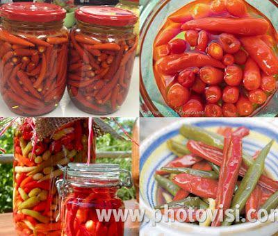 الفلفل المخلل الحار Stuffed Peppers Food Foodie