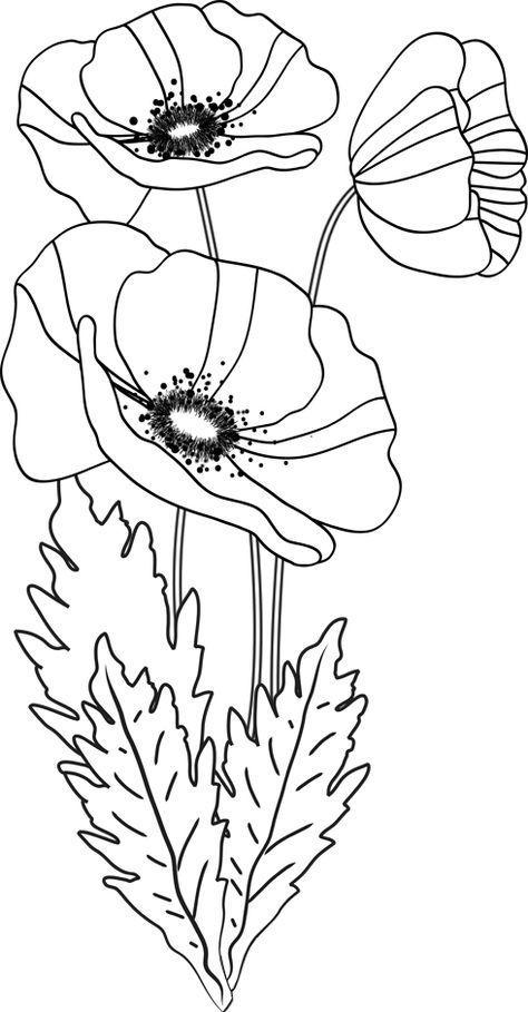 Stickmuster Von Mohnblumen Von Dory Fr Jwt Paint It Color It Sticker Mit Bildern Mohnblume Blumenzeichnung Stickerei Blumen