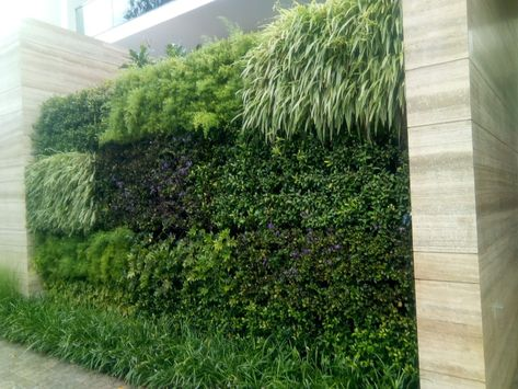 Vertical Garden, Wall Garden Panel Green (1 Frame + 3 Pots)
