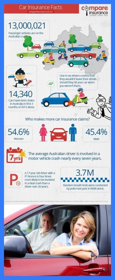 Car Insurance Facts Infographic Cars Insurance Facts