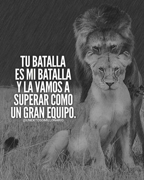 Etiqueta a esa persona 👇🏻👇🏻 . . . . . #rugidoemprendedor #titanesempresarios #apoyo #crecimiento #crecimientopersonal #aprendizaje…