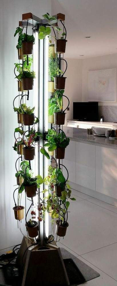 25 Trendy Apartment Plants Window Herbs Garden Apartment