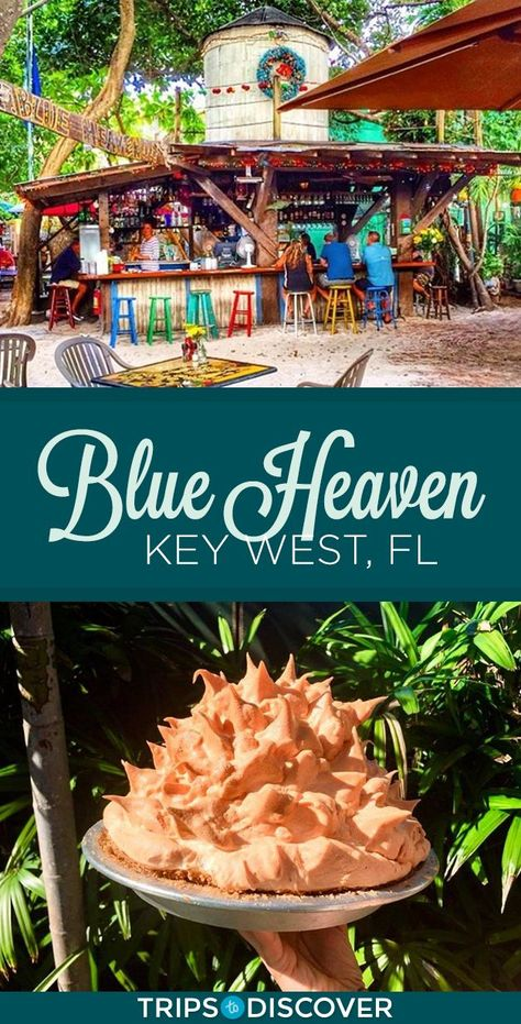 Indulge in Key Lime Pie at The Iconic Blue Heaven in Key West - One of the most iconic restaurants in all of Florida, Blue Heaven in Key West is a funky haven know - Florida Vacation, Florida Travel, Florida Beaches, Travel Usa, Florida Blue, The Florida Keys, Marathon Florida Keys, Islamorada Florida, Key Lime Pie
