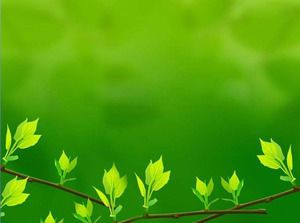 Gambar Background Bunga Hd - Gambar Ngetrend Dan VIRAL